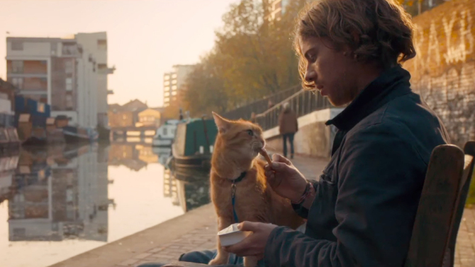 Luke Treadaway's 'Street Cat Named Bob' Gets U.S. Release