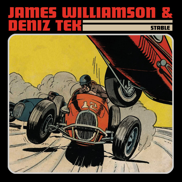 James Williamson & Deniz Tek - Stable