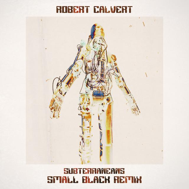 Robert Calvert - Subterrraneans (Small Black Remix)