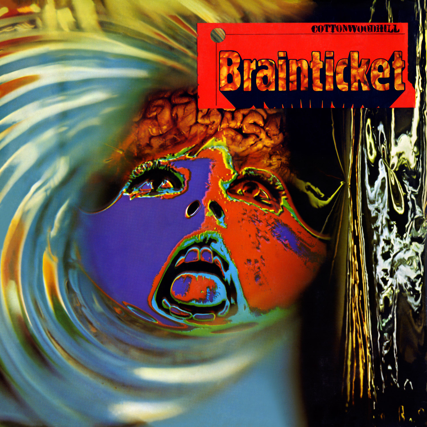 Brainticket - Cottonwoodhill