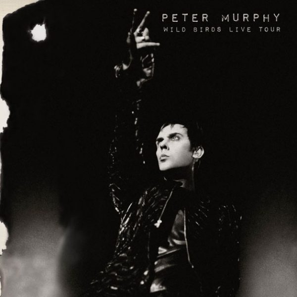 Peter Murphy - Wild Birds Live Tour (CD)