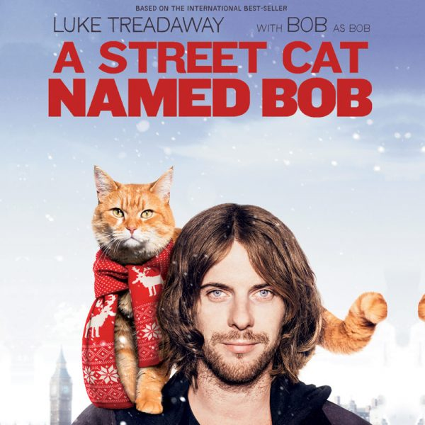 Street Cat Named Bob (DVD)