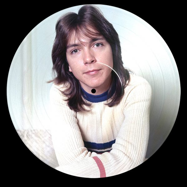 "David Cassidy - I Think I Love You - Greatest Hits Live (12"" PD)"