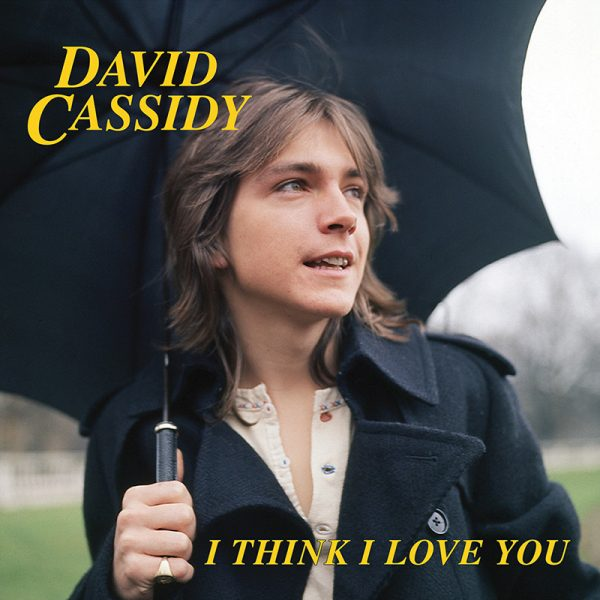"David Cassidy - I Think I Love You (7"" Vinyl)"